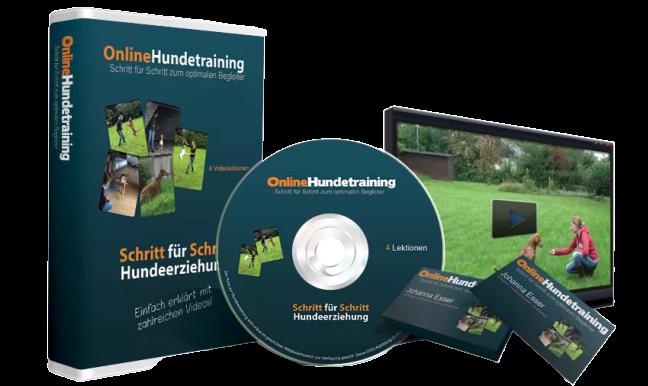 online hundetraining 4